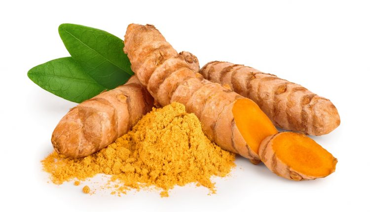 turmeric root and powder isolated on white background close up