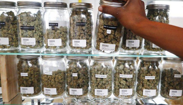 Marijuana Dispensary 2